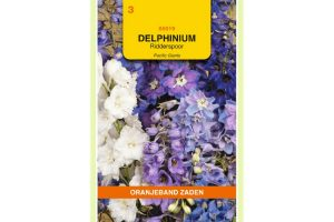 Oranjeband Zaden delphinium cultorum Pacific Giants