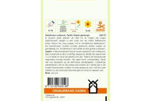 Oranjeband Zaden delphinium cultorum Pacific Giants