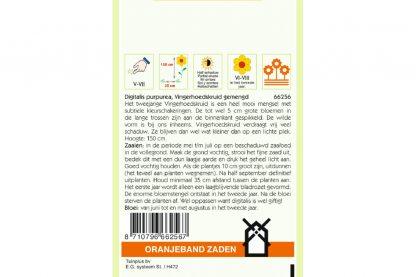 Oranjeband Zaden digitalis purpurea Gemengd