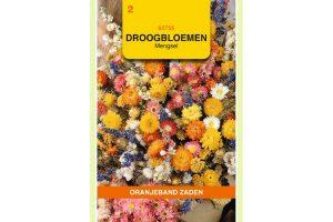 Oranjeband Zaden droogbloemen mengsel