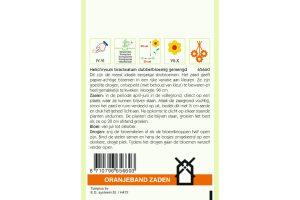 Oranjeband Zaden helichrysum bracteatum Dubbelbloemig gemengd