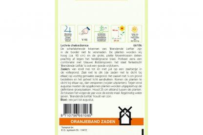 Oranjeband Zaden lychnis chalcedonica Rood