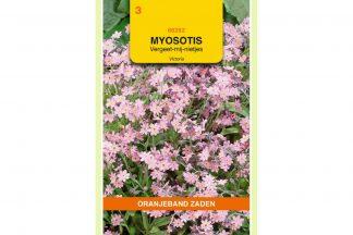 Oranjeband Zaden myosotis alpestris Victoria roze