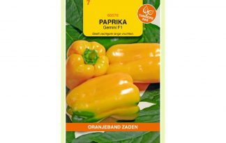 Oranjeband Zaden paprika Gemini F1