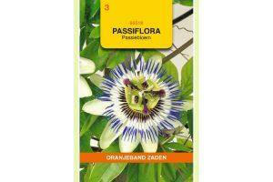 Oranjeband Zaden passiflora caerulea Passiebloem