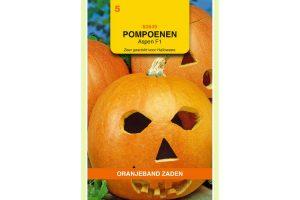 Oranjeband Zaden pompoenen Aspen F1