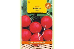 Oranjeband Zaden radijs Topsi