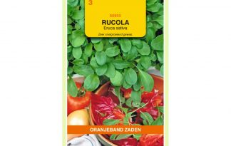 Oranjeband Zaden rucola Eruca sativa