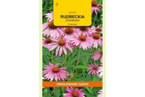 Oranjeband Zaden rudbeckia purpurea Purperrood