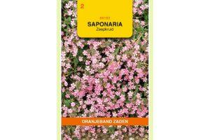 Oranjeband Zaden saponaria ocymoides Roze