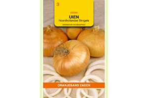 Oranjeband Zaden uien Noordhollandse Strogele