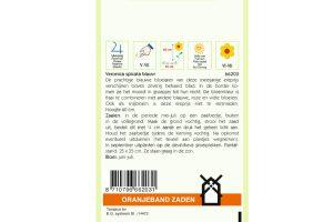 Oranjeband Zaden veronica spicata Blauw
