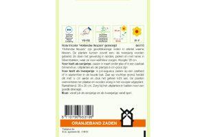Oranjeband Zaden viola tricolor Hollandse Reuzen
