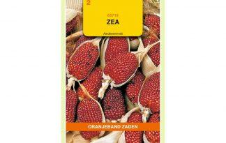 Oranjeband Zaden zea gracillima Aardbeienmaïs