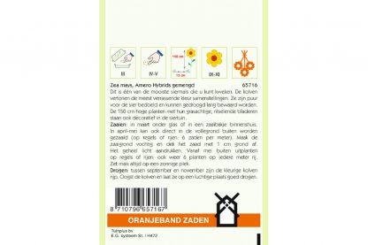 Oranjeband Zaden zea mays Amero Hybrids gemengd