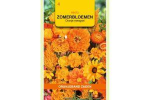 Oranjeband Zaden zomerbloemen Oranje mengsel