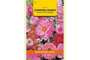 Oranjeband Zaden zomerbloemen Rood en Roze mengsel