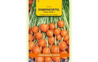 Oranjeband Zaden zomerwortel Parijse Markt 4