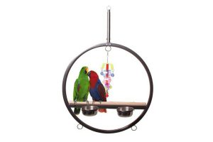 Original Strong papegaaienschommel Play Gym