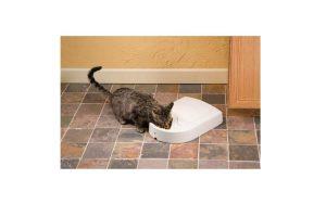 PetSafe Eatwell 5 Meal Pet Feeder