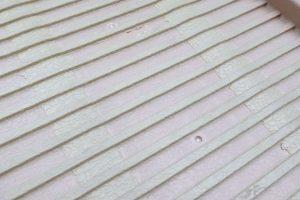 Dogstep inklapbare hondenloopplank