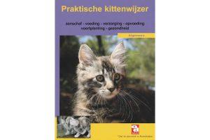 Praktische kittenwijzer boek