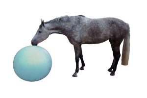 QHP paardenvoetbal 100 cm - blauw