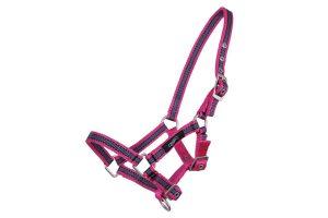 QHP halster veulen collection Pink Leopard