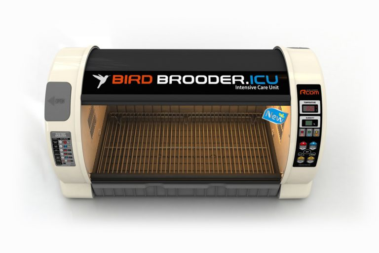 R-com Bird Brooder couveuse Large