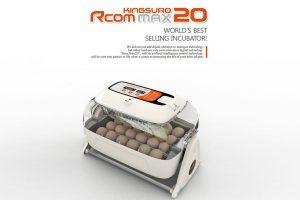 R-com King Suro 20 Max broedmachine