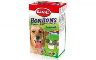 Sanal bonbons zeewier