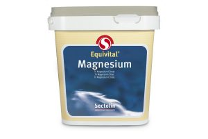 Sectolin Equivital Magnesium