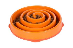 Outward Hound Slo Bowl Feeder Coral