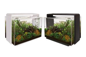 Superfish aquarium Home 80