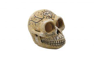 Superfish decoratie Skull Monkey