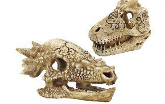 Superfish decoratie Skull T-rex