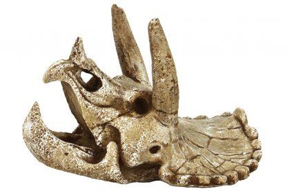 Superfish decoratie Skull Triceratops