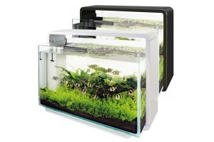 Superfish aquarium Home 60