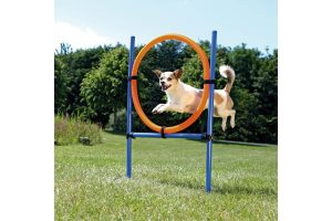 Trixie Dog Activity Agility ring