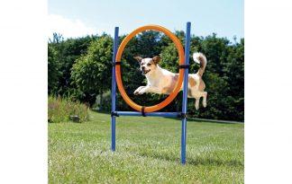 Trixie Dog Activity Agility ring