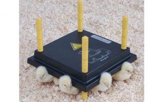 Comfort warmhoudplaat voor kuikens - 25 x 25 cm