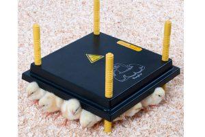 Comfort warmhoudplaat voor kuikens - 30 x 30 cm