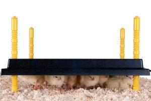 Comfort warmhoudplaat voor kuikens - 40 x 50 cm